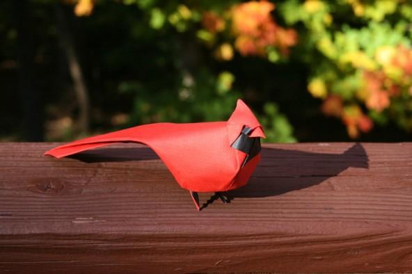 Northern cardinal Mẫu xếp giấy do Đinh Trường Giang thực hiện.